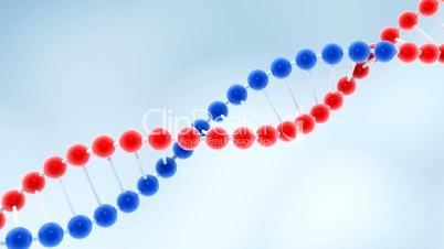 Seamless loop of rotating molecule of DNA.