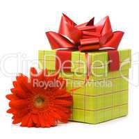 Red gerber flower and gift box on white background