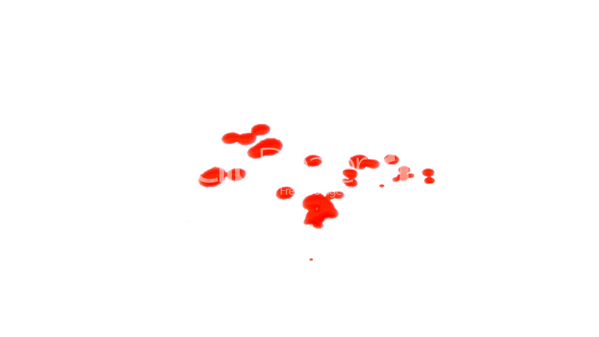 Blood splatters on white: Royalty-free video and stock footage