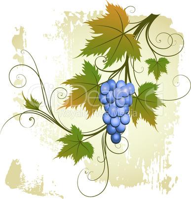 Weinmotiv