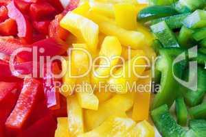Frischer Paprika - Fresh Pepper