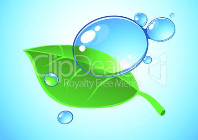 Wassertropfen und Blatt
