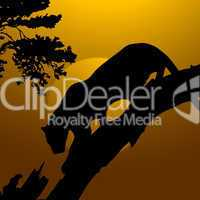 silhouette view of tiger on a tree, wildlife