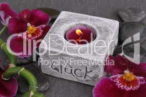 Orchideenblüten mit Teelichthalter