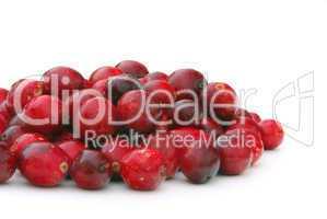 Cranberry 10