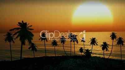 1154 Tropical Island Sunset Palm Trees Ocean Waves Animation