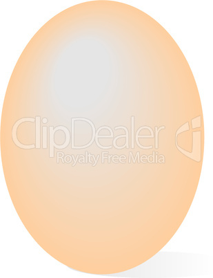 Realistic illustration egg
