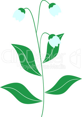 Illustration of lily of the valley