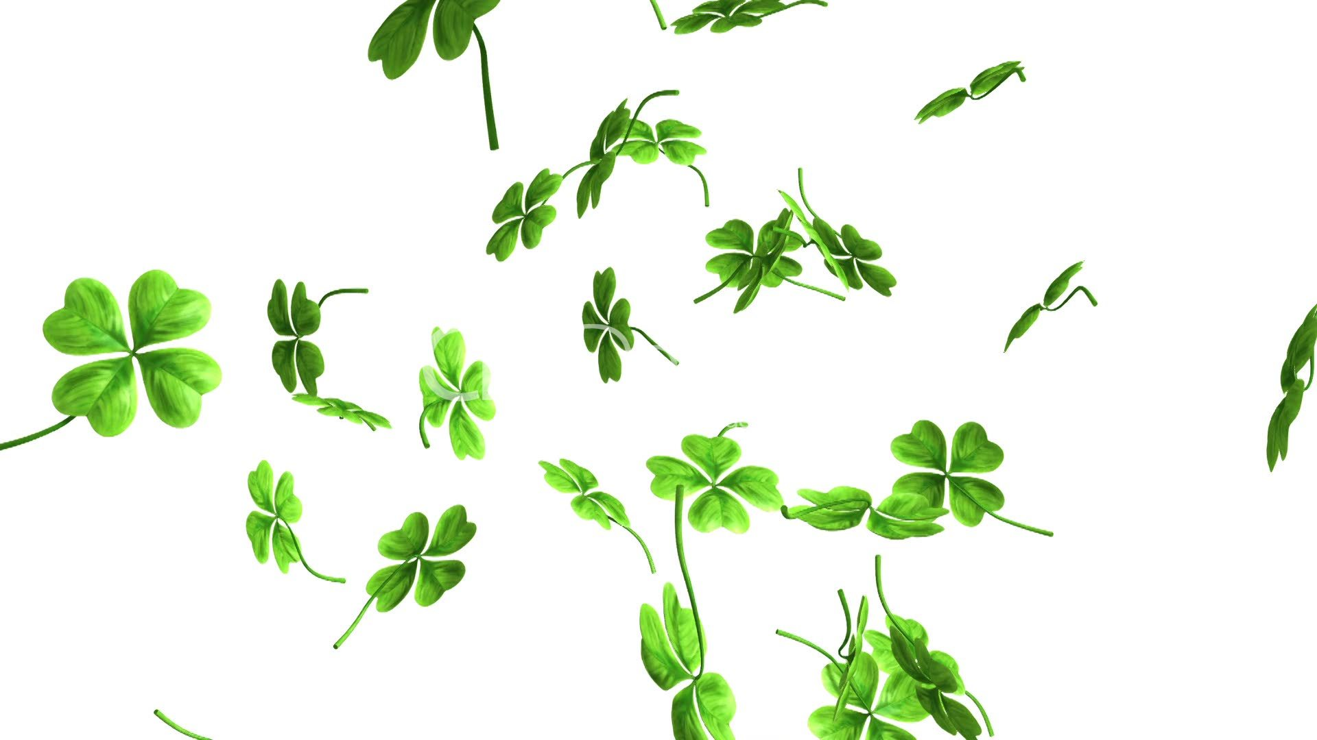 falling shamrock leaves royaltyfree video and stock footage