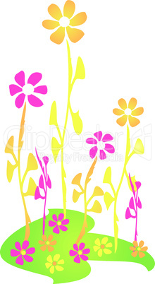 Frühlingsblumen - Spring Flowers