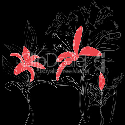 Red flowers on black background