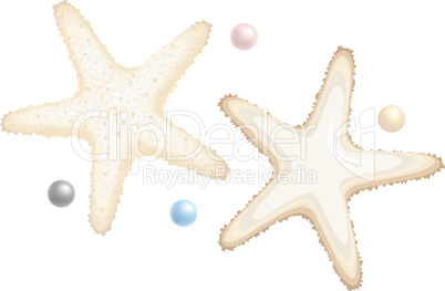 Starfishes and Perls Isolated on White