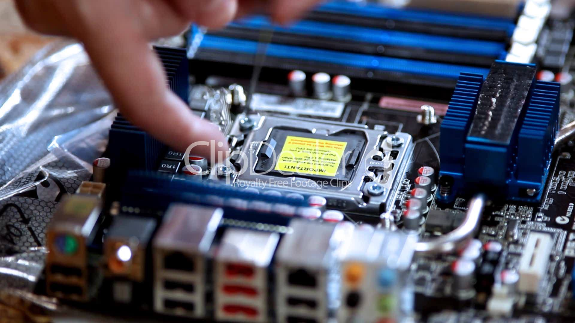 Assembly Computer Install Processor Royalty Free Video