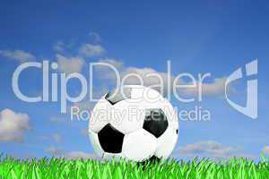 Fußball in Wiese