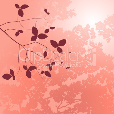 Summer Floral Background Salmon