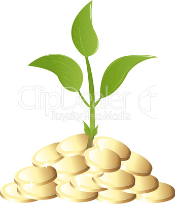 Green Young plant with money