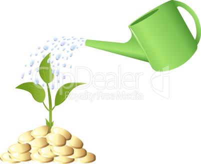 Green Young plant with money and watering can