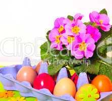 Eier und Blumen