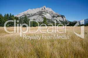 Mount Cascade