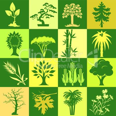 symbols of plants
