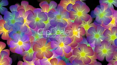 purple wild flower background,violet,flicker,Festivals,romance,romantic,bloom,lush,prosperous,welcome,creativity,creative,vj,beautiful,art,decorative,mind,Game,Led,neon lights,modern,stylish,dizziness,material,stage,music,joy,happiness,happy,young,loop,mo