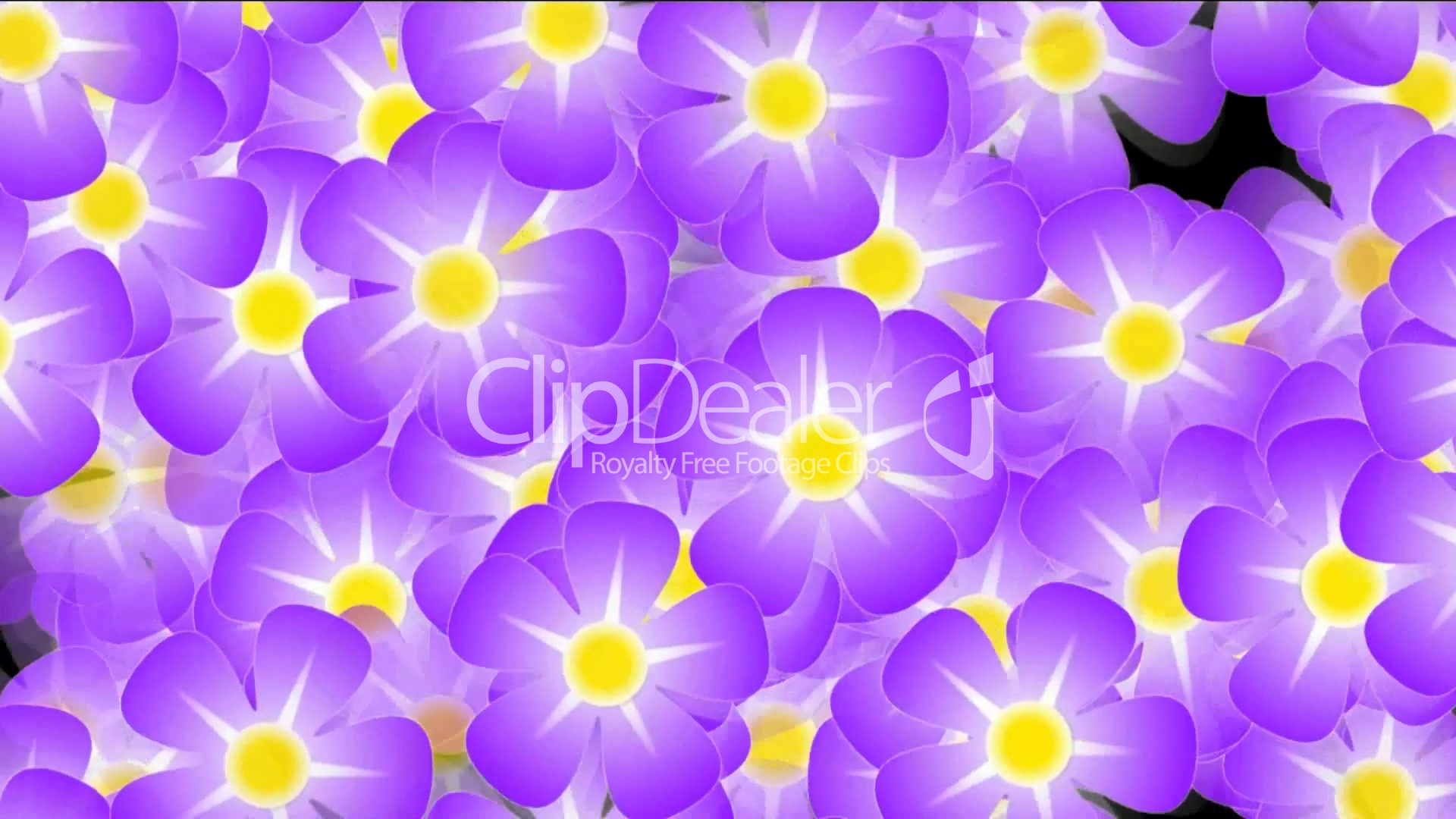 Purple Wild Flower Background Violet Flicker Festivals