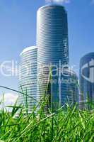 Nature and skyscraper