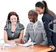 Confident business co-workers studying a document