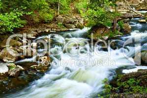 River through woods