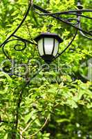Arbor with lantern