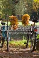fall couple of bicycles