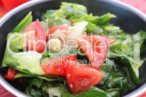 frischer salat (A.Bogdanski)