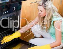 Portrait of a beautiful housewife cleaning