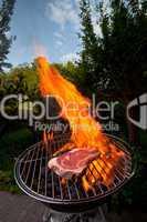 T-Bone-Steak auf dem Grill im Freien