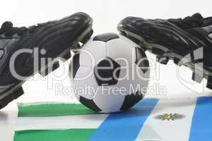 Fußball-WM 2010