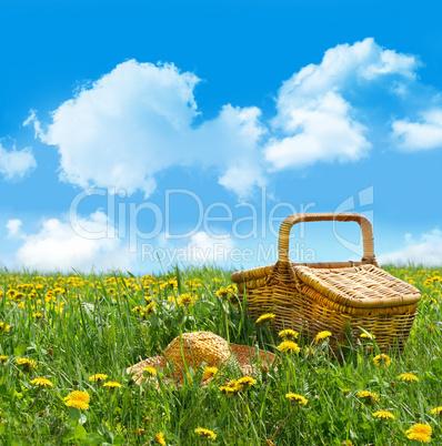 Picknickkorb auf Wiese