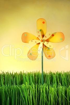 Windrad auf Wiese