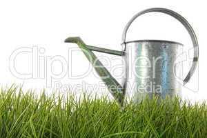 Gießkanne und Gras