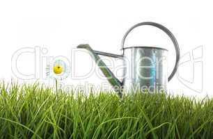 Gießkanne auf Gras