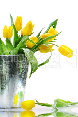 Gelbe Tulpen im Kübel