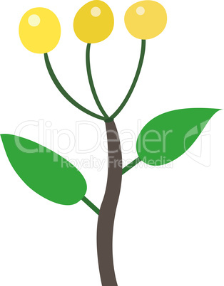yellow berry illustration on white background