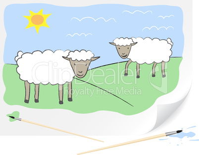Drawing sheeps