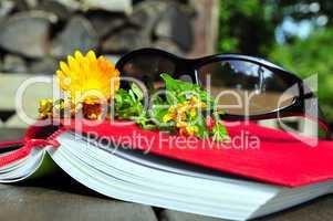 Buch Sonnenbrille Sommer