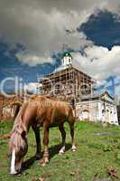 The horse and old church