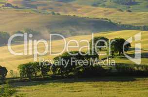 Toskana Huegel  - Tuscany hills 16