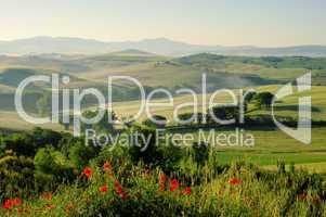 Toskana Huegel  - Tuscany hills 19