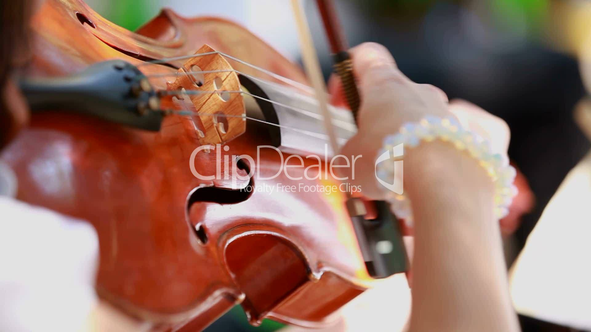 Violinist plays the violin: Royalty-free video and stock footage