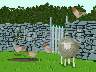 Farmtiere - Farm Animals