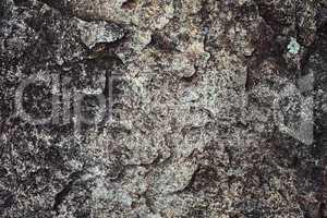 Gesteinsformation Textur