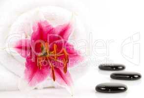 Lilie und Spa Steine/ lily and spa stones